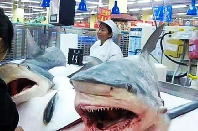 Aceste lucruri bizare le poti  vedea numai în China!!
