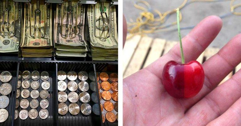 20 de imagini care sunt mai satisfăcătoare decât trecerea prin frunze uscate toamna