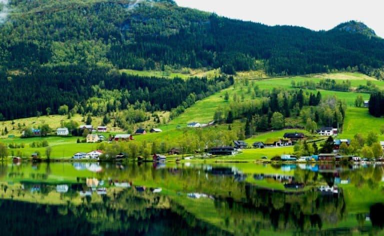 Norvegia devine prima țară din lume care interzice complet despăduririle